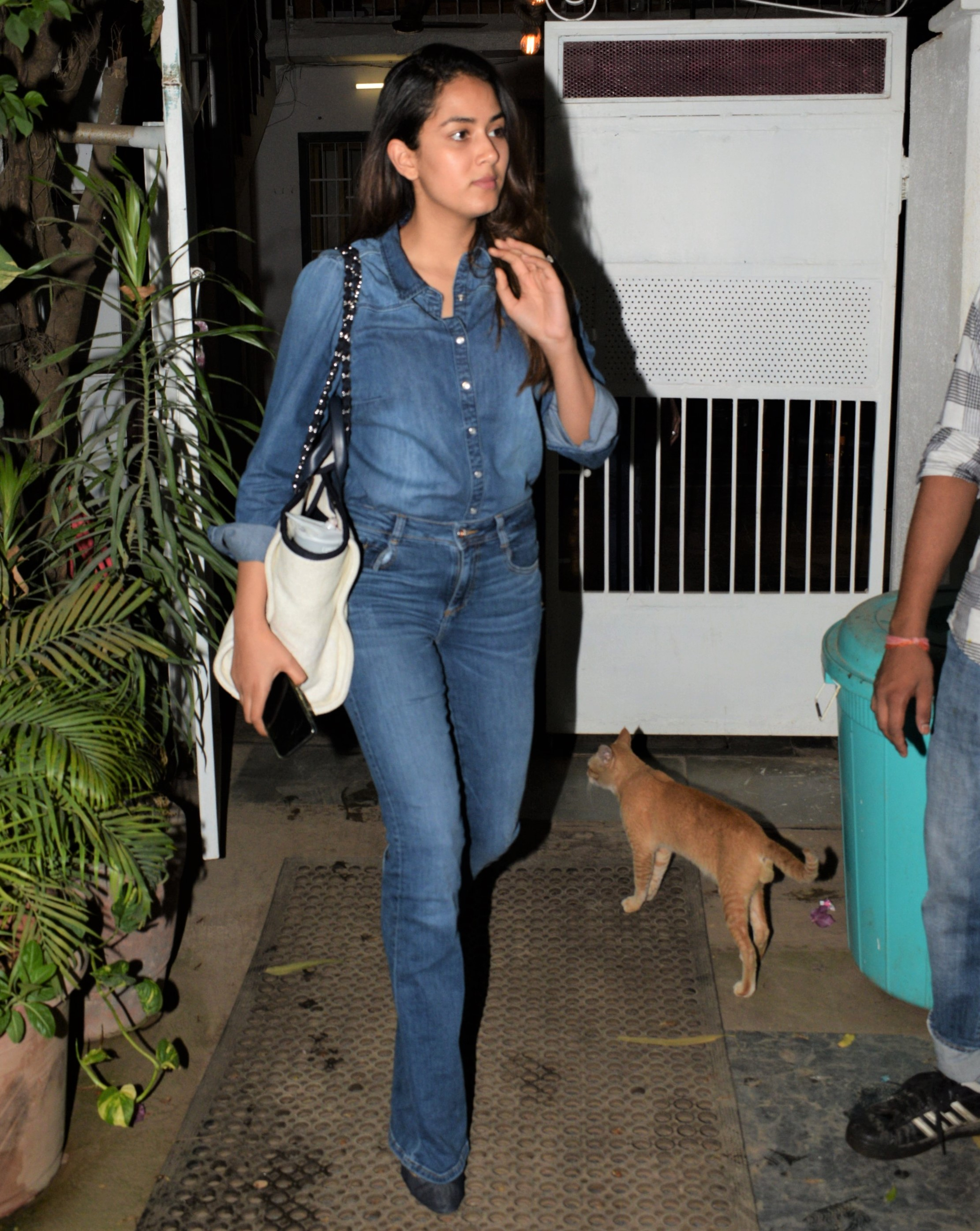 Deepika Padukone, Mira Kapoor and Ananya Panday: Best Denim Looks of the Week!