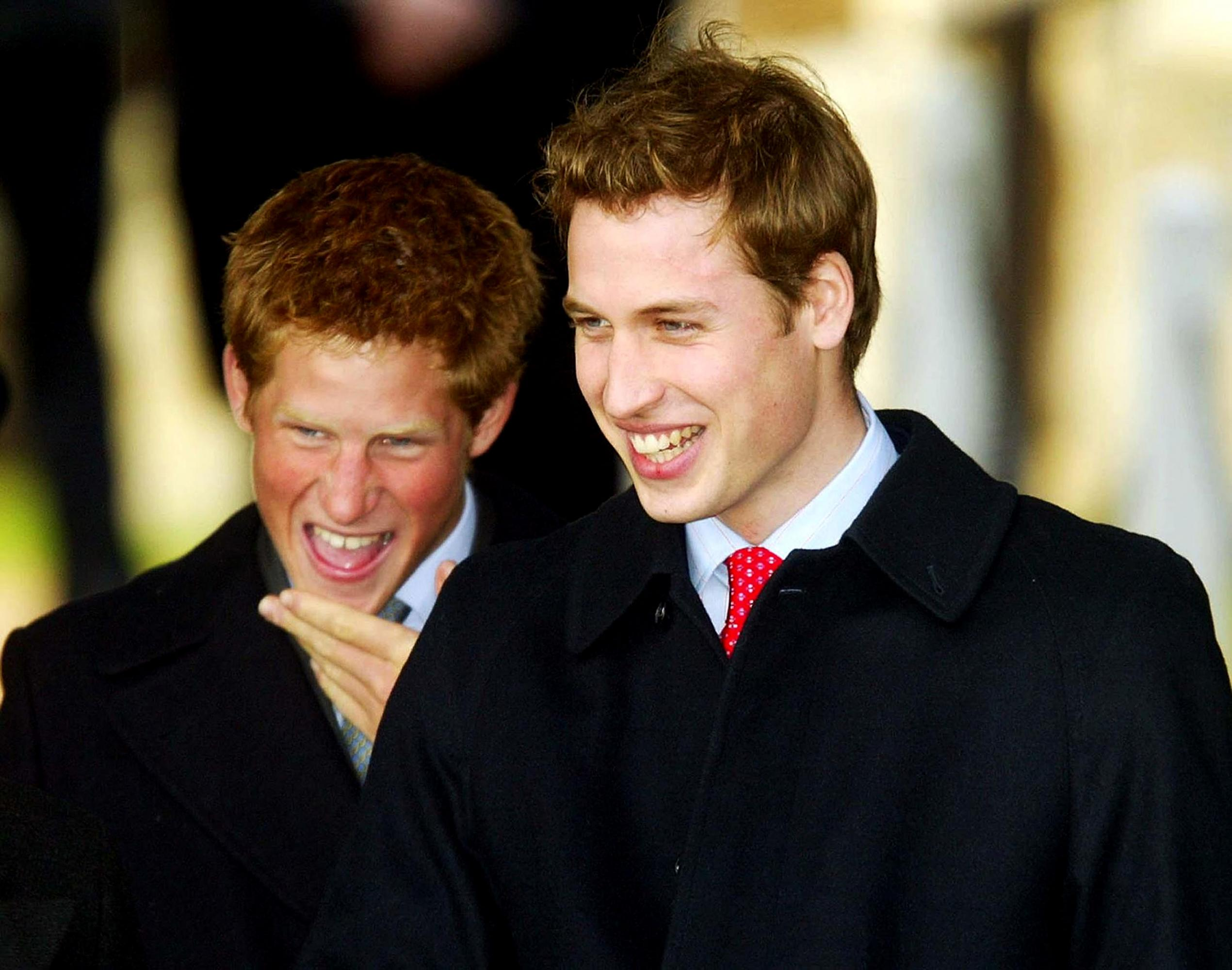 The Reason Behind Prince William and Prince Harry's Feud