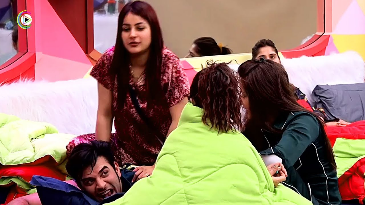 Bigg Boss Season 13: Paras Chhabra's Budding Romance With Shehnaaz Gill Could Not Stand The Test of Time