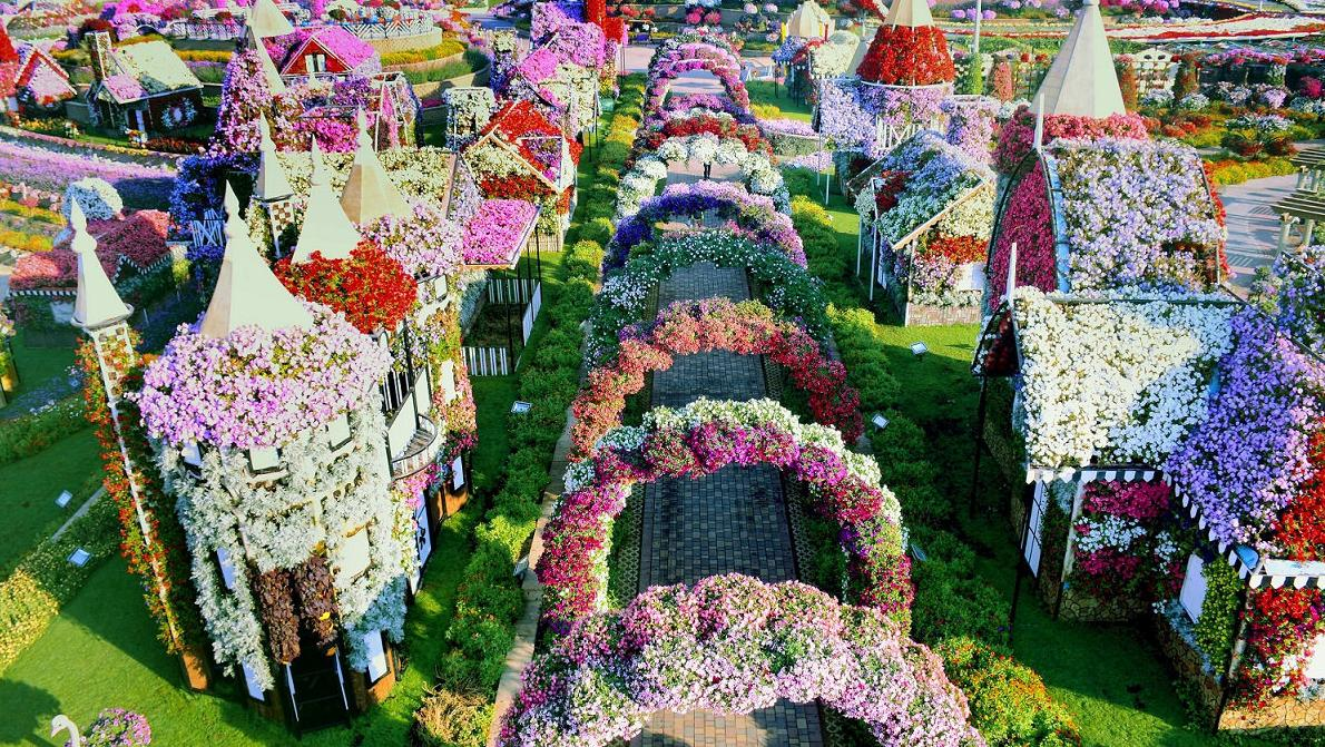 Instagrammable Places in Dubai - Miracle Garden