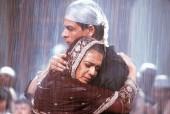 7 Films That Aishwarya Rai Bachchan Should Not Have Rejected