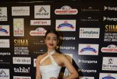 Stars Grace The Red Carpet of SIIMA 2016
