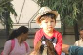 Star Spotting: Baby Taimur Rides A Horse Again, Shraddha Kapoor Keeps It Casual and Katrina Kaif Papped!