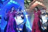 Katrina Kaif Performs at an INR 200-Crore Wedding. Check Out Her Moves!