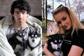 Sophie Turner and Joe Jonas' Dog Passes Away in an Accident