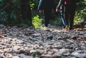 How a Daily Morning Walk Helps You In Keeping Up With Your Health