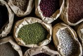 5 Nutritional and Healthy Benefits Of Legumes