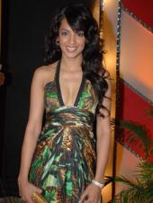 The 8th Indian Telly Awards