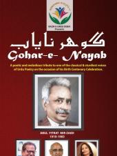 Enjoy a Tribute to Famous Urdu Poet Abul Fitrat Mir Zaidi