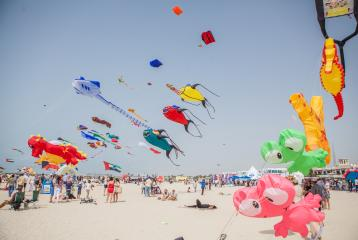 Dubai to Host a Two-Day Kite Flying Festival 'Basant Bahar' for Indians and Pakistanis