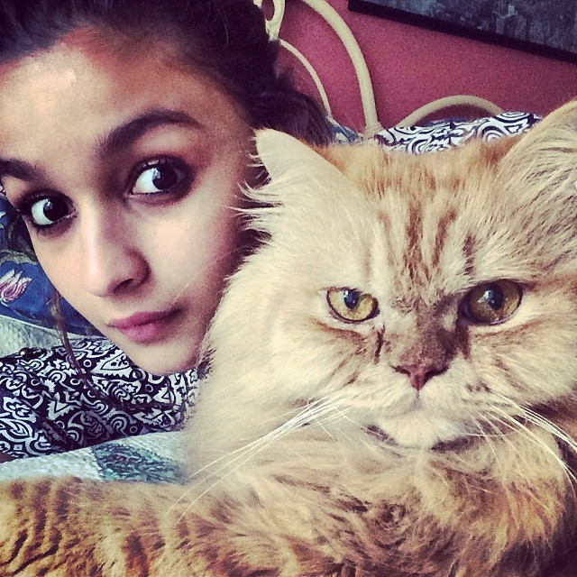 Alia Bhatt regularly Instagrams pictures of her adorable cat Pika who was named after the Pokemon character