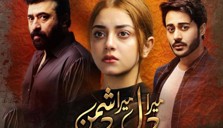 Mera Dil Mera Dushman, Episodes 1 to 3: Yasir Nawaz's Latest Show Seems Different