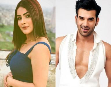 Bigg Boss Season 13: Has Paras Chabbra and Shehnaz Gill's Story Come to an End?