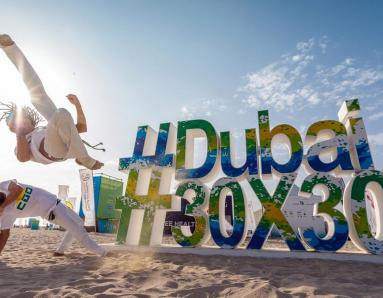 Dubai Fitness Challenge 2019: From Celebrity Appearances to Marathons, DFC Brings it All Under One Roof for Fitness Fanatics