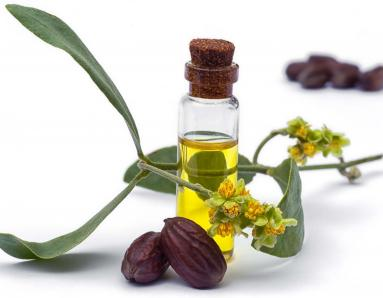 Jojoba Oil: 10 Beauty Benefits