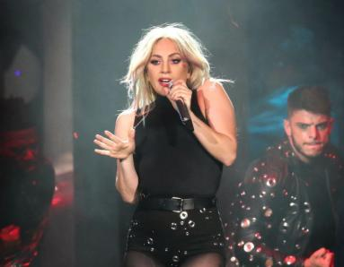 Lady Gaga: New Species of Insect Named After The Singer