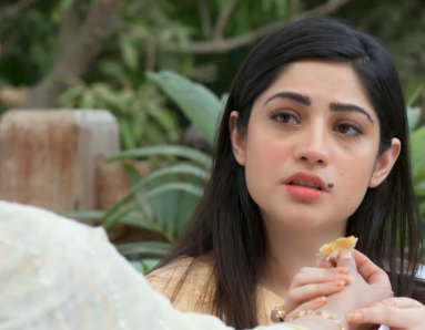 Kahin Deep Jalay Episode 26: Zeeshan Repents For His Actions Towards Rida