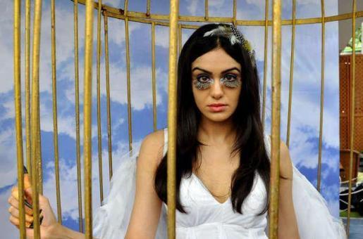 Adah Sharma Set for Her Kannada Film Debut