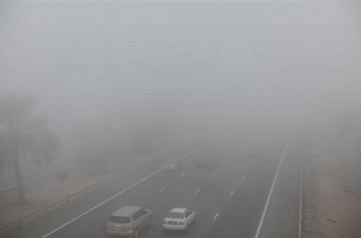 Abu Dhabi Fog: Authorities Reduce Speed Limit for Motorists for the Second Time This Week