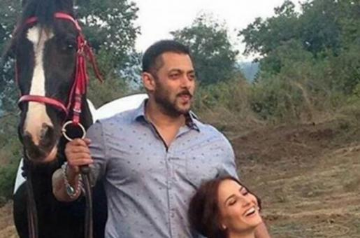 What Are Salman Khan And Elli Avram Up To?