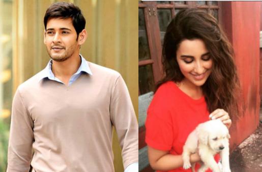 Hot New Jodi: Parineeti Chopra to Debut in Telugu Movie Opposite Superstar Mahesh Babu!