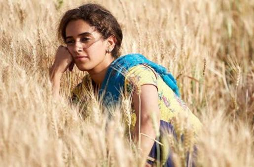 Pataakha Movie Review: Is this Sanya Malhotra, Radhika Madan and Vijay Raaz Starrer Worth a Watch?