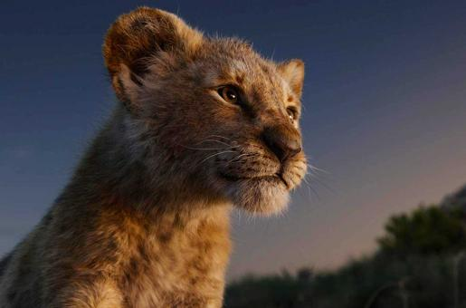 Why The Lion King is One of the Most Awaited Movies This Season Despite Criticism