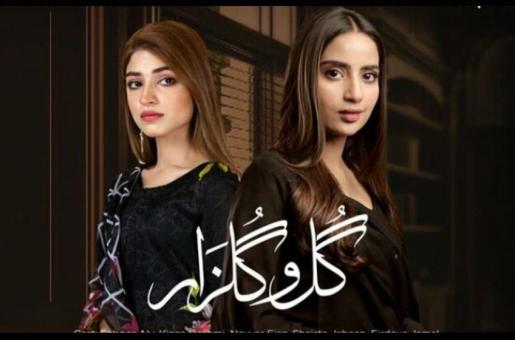 Gul O Gulzar, Episode 12: Adil's Betrayal Is Revealed