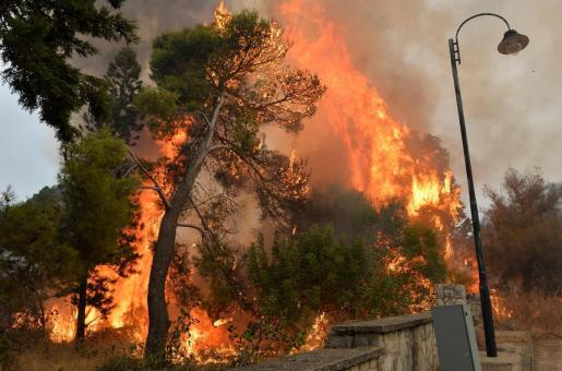 Lebanon Wildfires and Climate Change: Strong Forest Fires Spread Forcing Residents to Flee their Homes