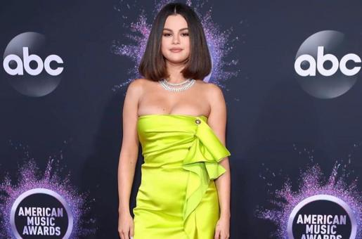 Selena Gomez's Blackout: Singer Allegedly Suffered Panic Attack Ahead of AMAs Performance