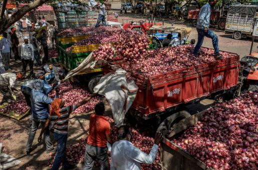 Onions in India: After Tomatoes in Pakistan, Onions are the New Vegetables to be Meme-fied
