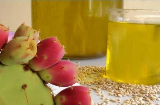 Prickly Pear Seed Oil: Beauty Benefits Of Moroccan Beauty Product