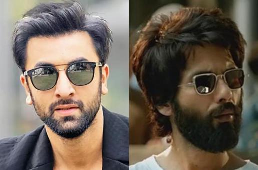 Ranbir Kapoor to Refuse Kabir Singh Director's Next Film?