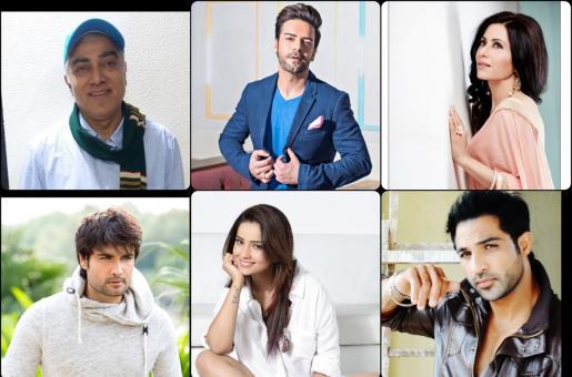 Vivian Dsena, Rakhi Vijan, Adaa Khan and Other TV Stars' Predictions for 2020