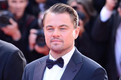 Leonardo DiCaprio Doesn't Understand the End of Inception Either