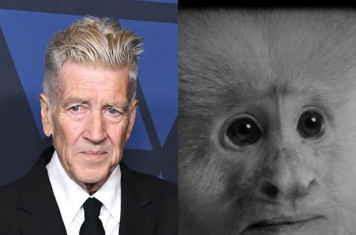 David Lynch Releases Surprise Short Film, What Would Jack Do? on Netflix