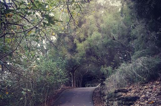 Saadia's Side: Seeking Bliss in Solitude Can Slim Down the Expat Woes