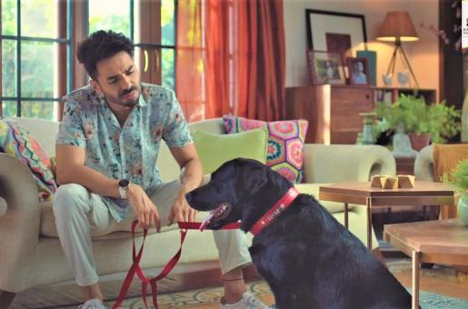 Nawab Short Film Review: Aparshakti Khurana Shines in This Beautiful Little Film