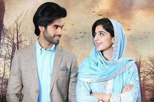 Pakistani Dramas' Weekend Roundup:  Meherposh, Dil Ruba and Sabaat