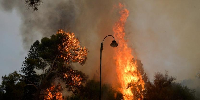 Lebanon Wildfires: Cyprus and Greece Help Combat Forest Fires in the Middle East