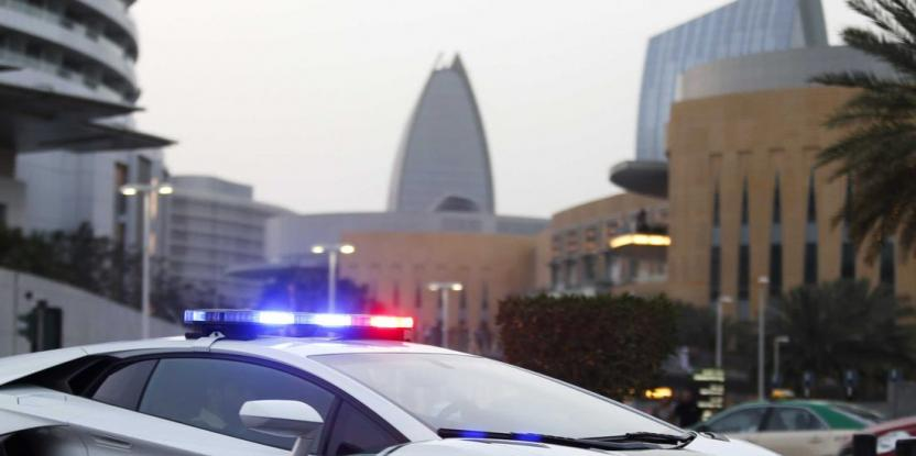 Dubai Police Officers Prevent Theft in Jebel Ali, Arrest Suspects