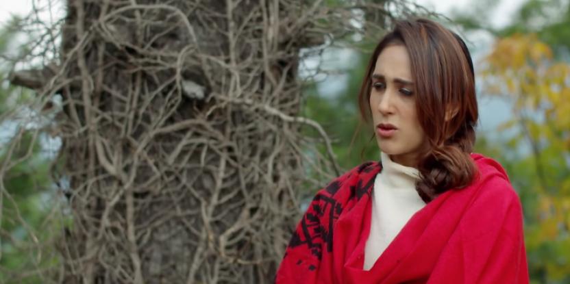 Ye Dil Mera Episode 23:  Neelofar And Humaira Clear Their Misunderstandings